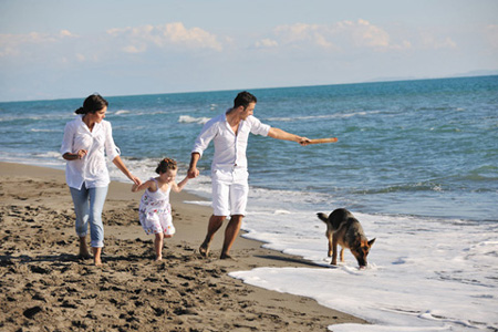 dog friendly holiday cottages Cornwall