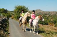 Bodmin Moor- Horse riding